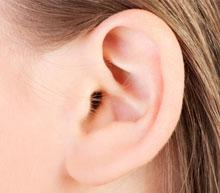 k-ear-bw